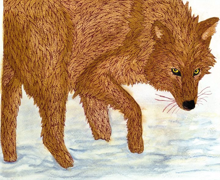 coy wolf - Ben Roback's Art