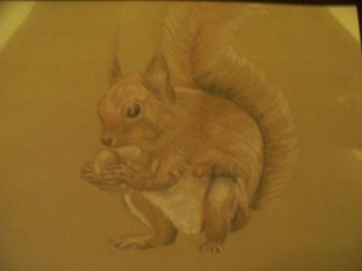 Squirrel - Ernie Westfall