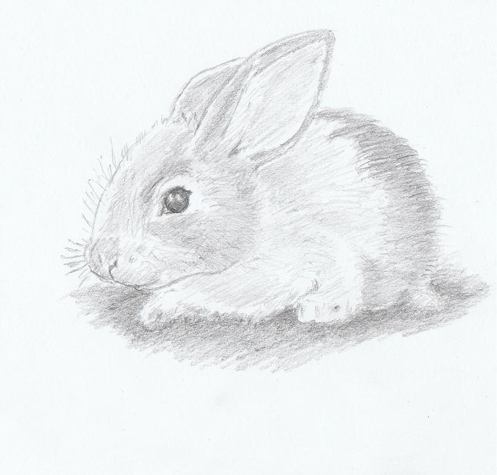 Baby Rabbit - Ernie Westfall