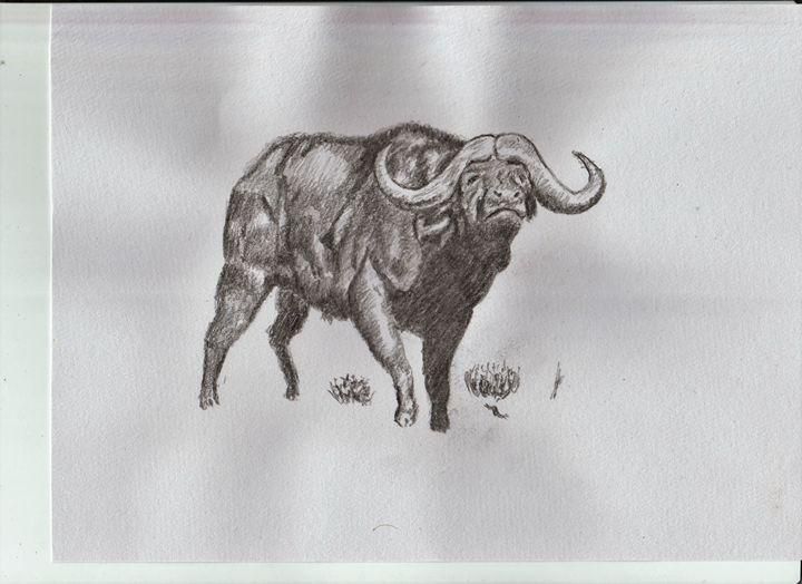 Water Buffalo - Ernie Westfall