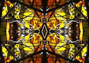 Autumn Stained Glass Leaves