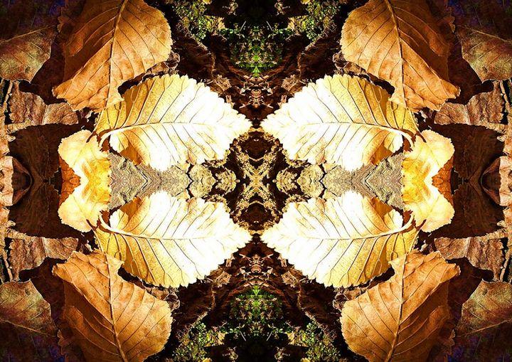 Leaf Flower - Sherrie Hall