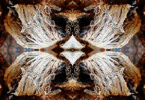 Beaky Pout