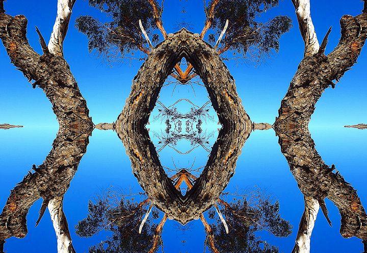 Arbor in the Sky - Sherrie Hall