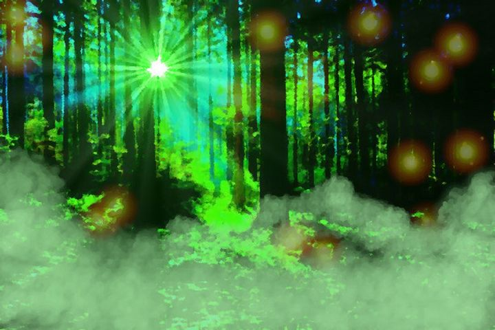 Enchanted woods - DigiPainter