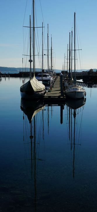 Sail Boats in the Marina - Photography by Rob