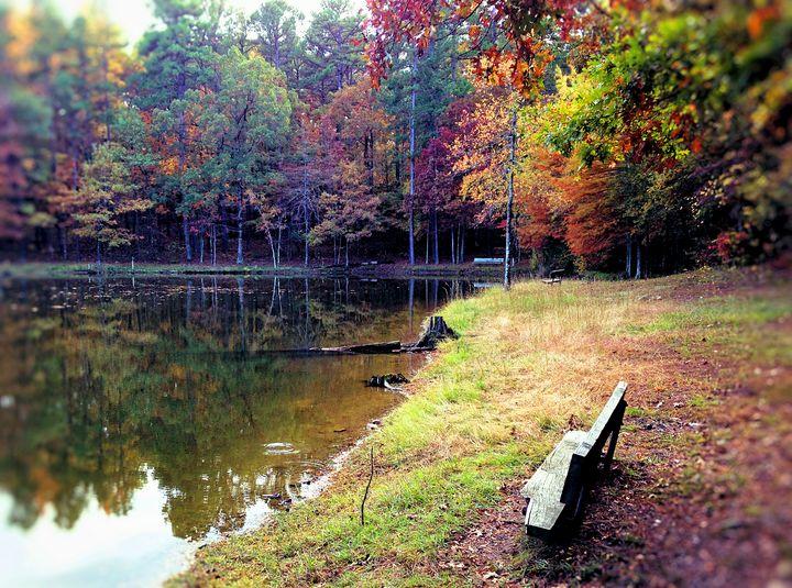 Silent Pond 2 - Auterys Art