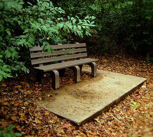 Lonely Park Bench - Auterys Art