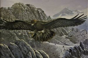 Golden eagle and Mt. Shasta