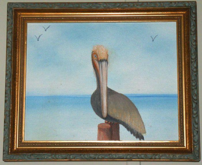 Florida Pelican - IGOT2BME