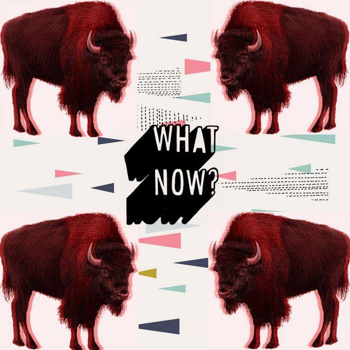 National Mammal - Cruising Dystopia: Internet Art & Poetics