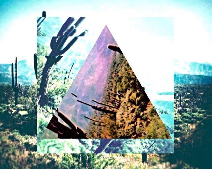 Cactus Paradise - Cruising Dystopia: Internet Art & Poetics