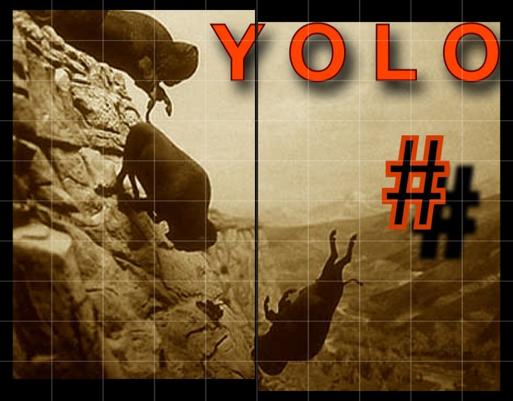 You Only Leap Once - Cruising Dystopia: Internet Art & Poetics
