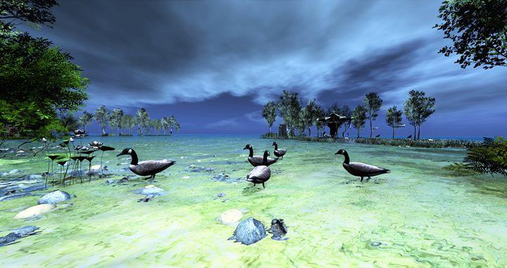 Ducks fantasy - IsaB