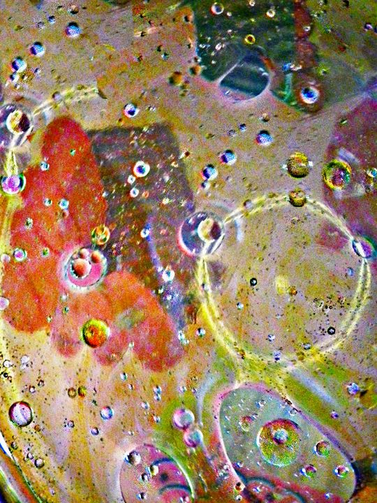 Oil and Water( Portrait} - Rogers Art Shop