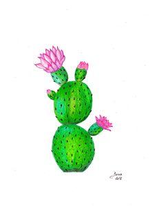 Cactus - Walanad