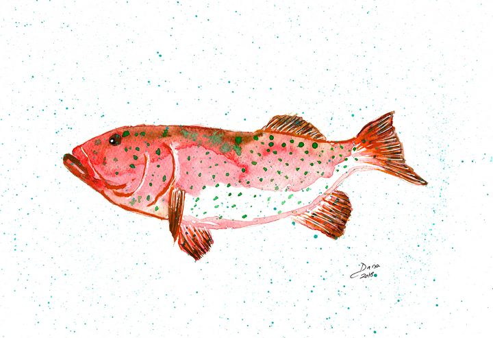 Coral Trout - Walanad