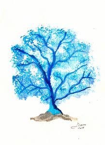 Blue Fan Coral