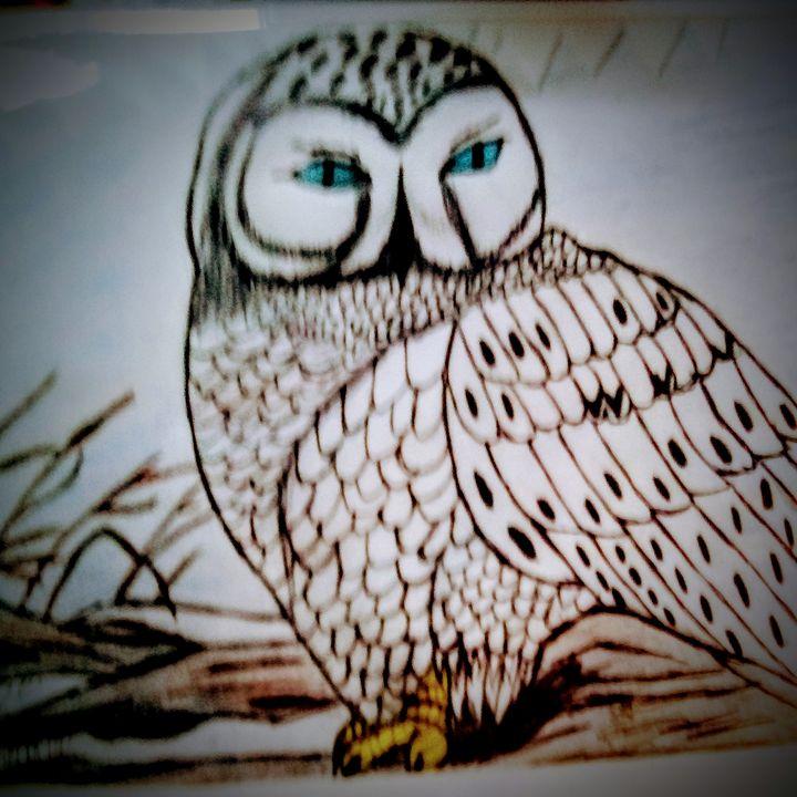 Owl - Giggly Girl