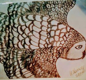 Soaring Owl