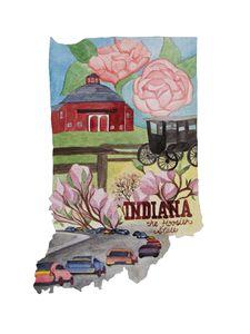 Indiana the Hoosier State - Bluebells & Butterflies