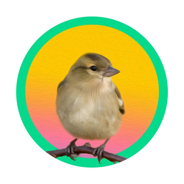The bird - KenanLEO