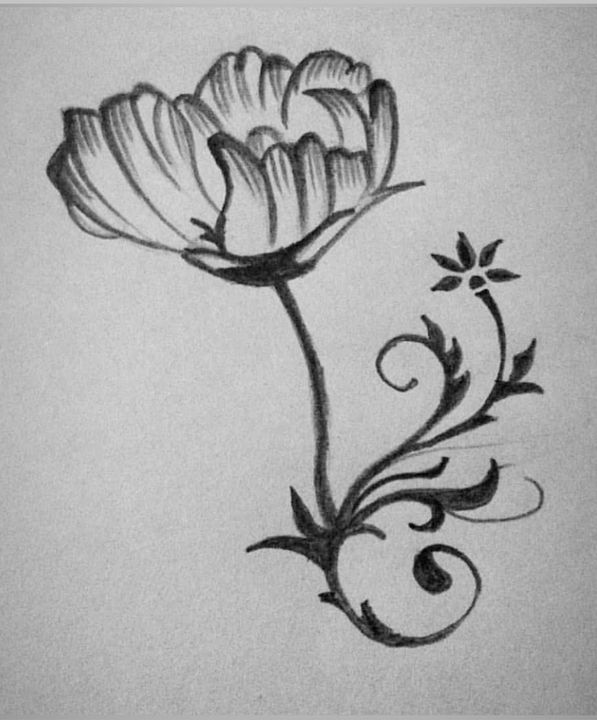 Where flowers bloom,so does hope..😊 - tols_arts