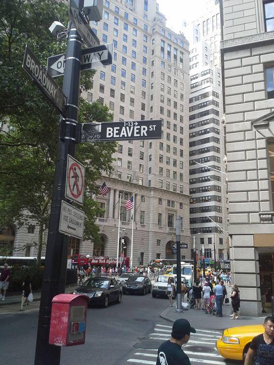 Beaver and Broadway - Jordan Burke