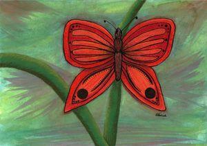 Red Butterflu