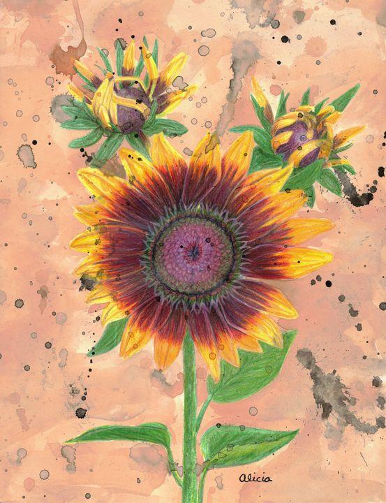 My Son S Sunflower Colored Pencil Splish Splash Art Drawings Illustration Flowers Plants Trees Flowers Flowers I Z Sunflowers Artpal
