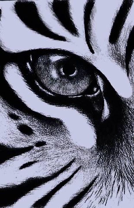 Tiger - Margarita Kisyova