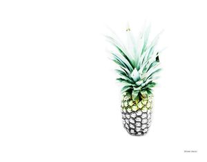 Pineapple - 2015