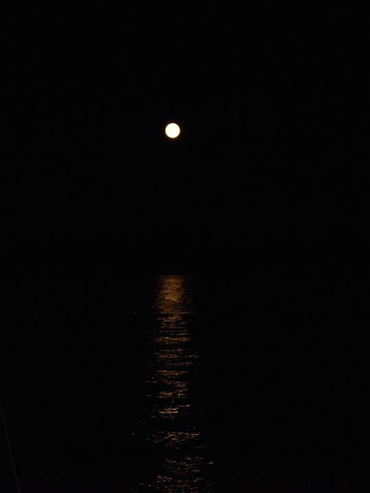 Werewolf Moon - Shannon Collins