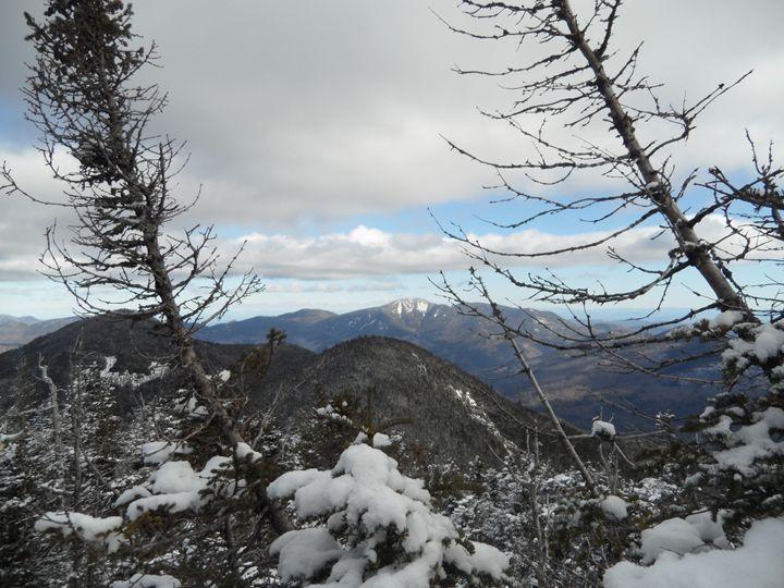 Adirondack Winter - Shannon Collins