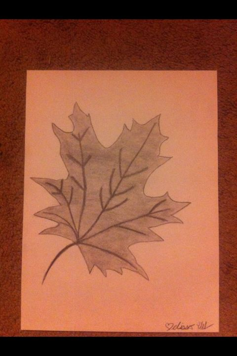 Charcoal leaf drawing - Treehuggingsisters