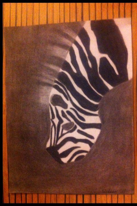 Charcoal zebra drawing - Treehuggingsisters