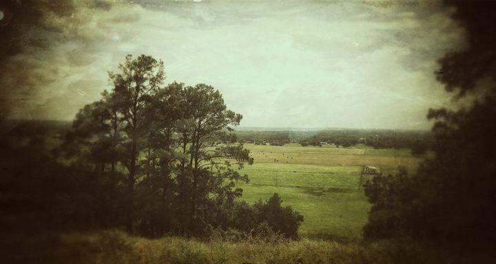 Vintage Landscape - Daniela Gonzalez