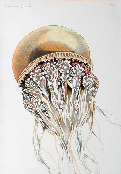 orange jellyfish - ORIGINAL SOLD - federico cortese