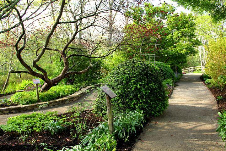 Garden Paths - NiceWebb Photography