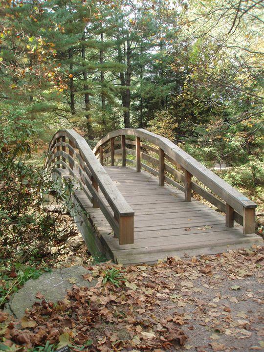 Bridge To New Discoveries - NiceWebb Photography