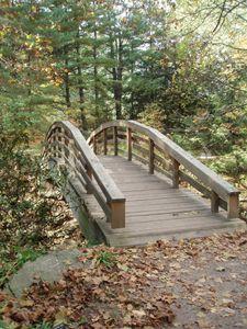 Bridge To New Discoveries