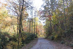 Bent Creek Road