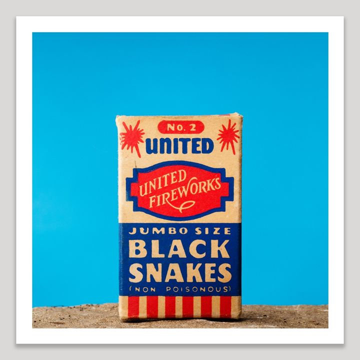 Black Snakes - Dave Shafer Fine Art