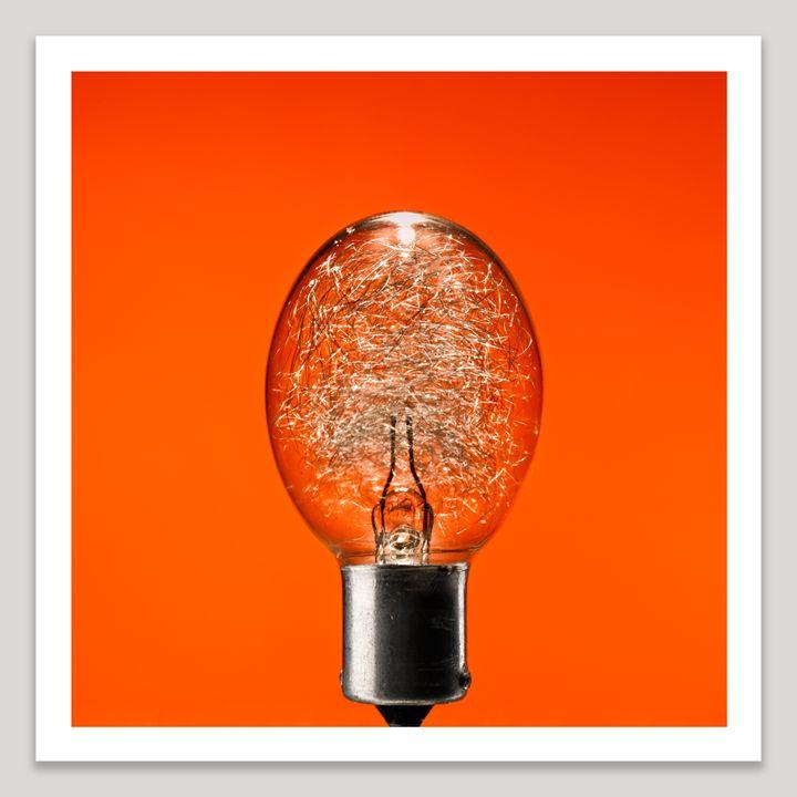 Flash Bulb - Dave Shafer Fine Art
