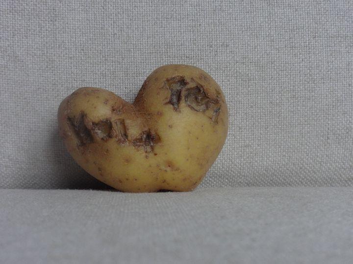 Life is potatoes - LaMa