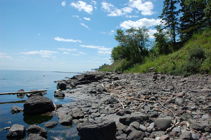 Drift Wood on the Shore - NorthShoreSDT