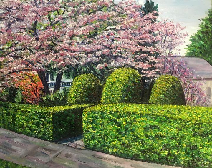 Spring Blossoms, Veterans Park - Richard Nowak Fine Art