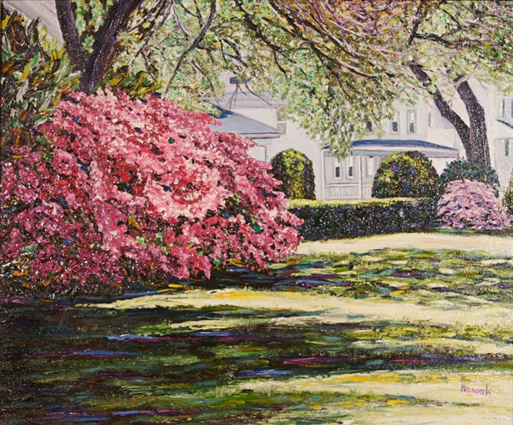 Spring Blossoms at Veteran's Park - Richard Nowak Fine Art
