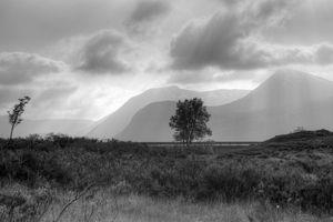 Scottish Highlands, black and white