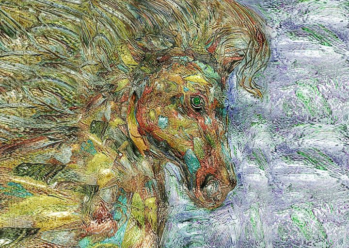 Wild Horse - Vidka Art